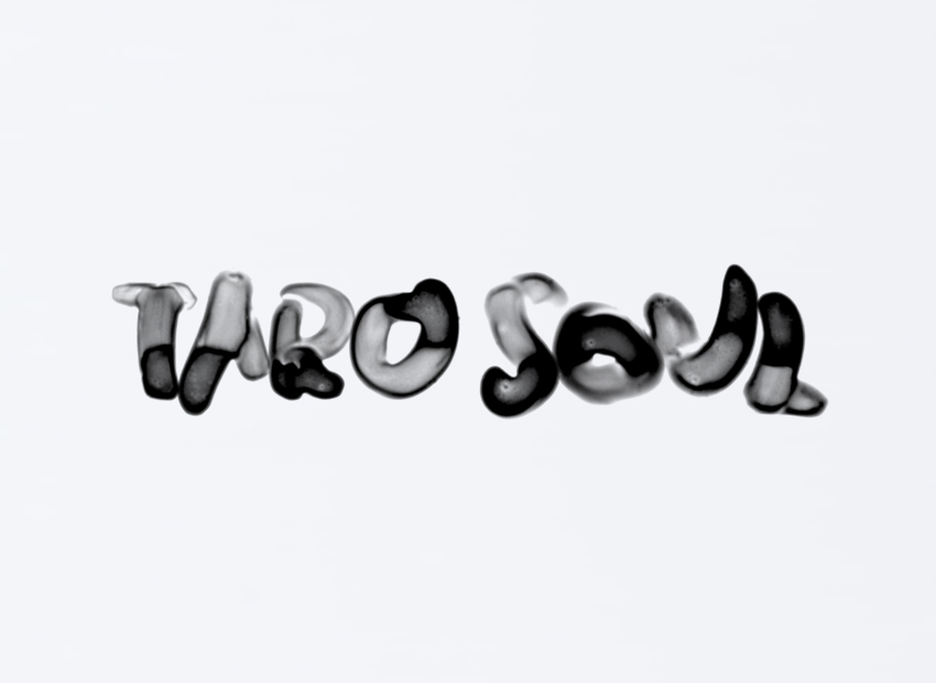 TARO SOUL